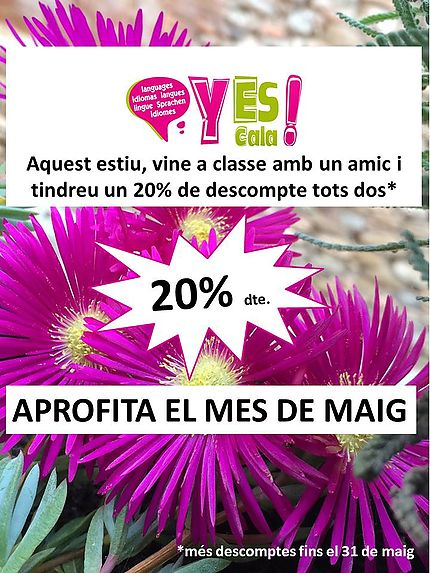 In May make the most of special promotions offered by the Yes! Language School